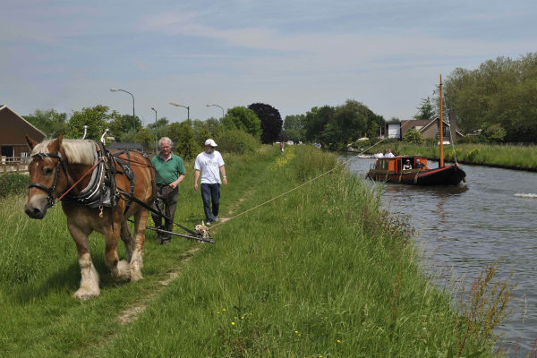 Horseboating in Holland