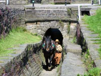 Horse tunnel in Marple. Photo: John Lupton