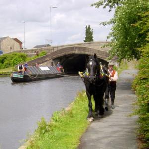 Elland on the Rochdale Canal