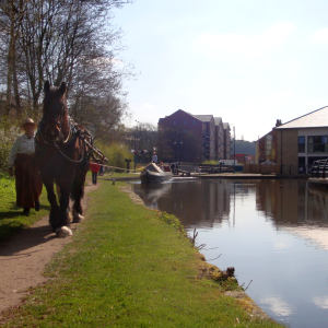 Maria at Stalybridge, Huddersfield Narrow Canal
