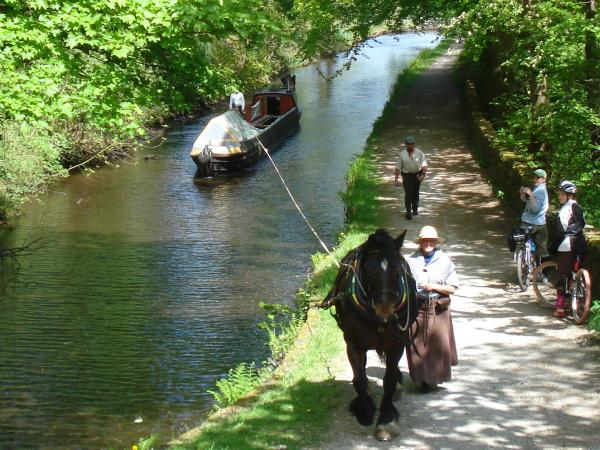 Horseboating with Maria
