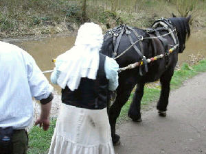 Maria horse drawn on the Peak Forest Canal