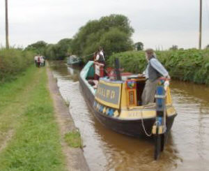 Maria horse drawn on the Trent and Mersey Canal